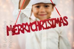 Holiday Minis Shanahan Blog -7