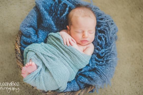 Sauder newborn-2