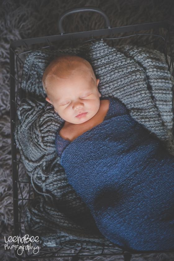 Meredith newborn-5