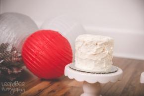 CakeSmash-15