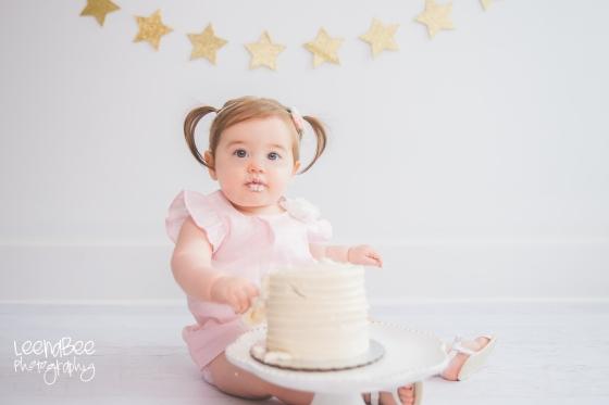 Dublin cakesmash first birthday-10