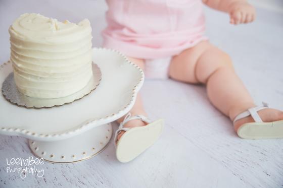 Dublin cakesmash first birthday-14