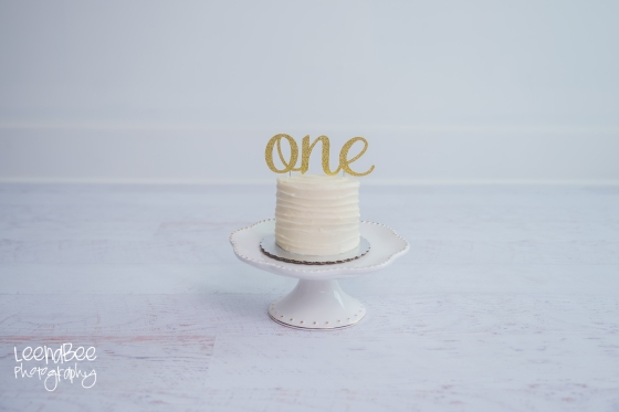 Dublin cakesmash first birthday-6