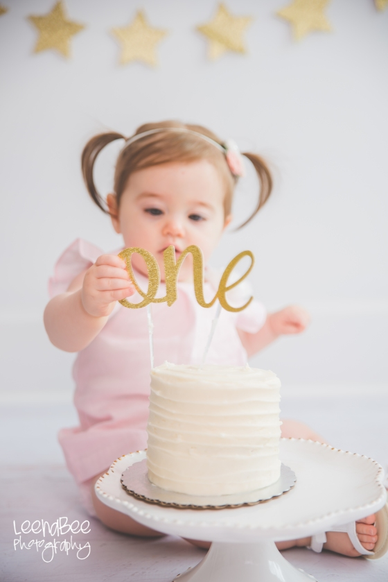 Dublin cakesmash first birthday-9