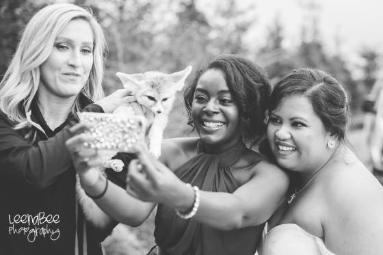columbus-zoo-wedding-41