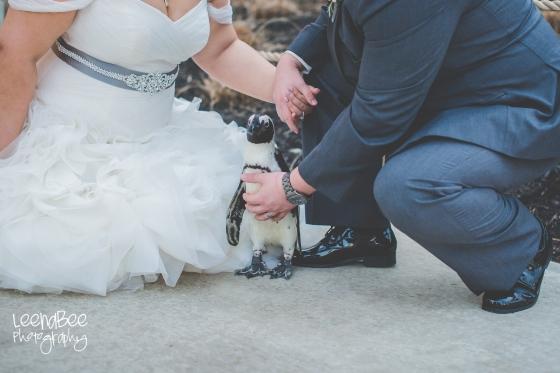 columbus-zoo-wedding-43
