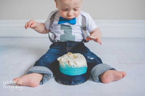 dublin-ohio-cake-smash-14