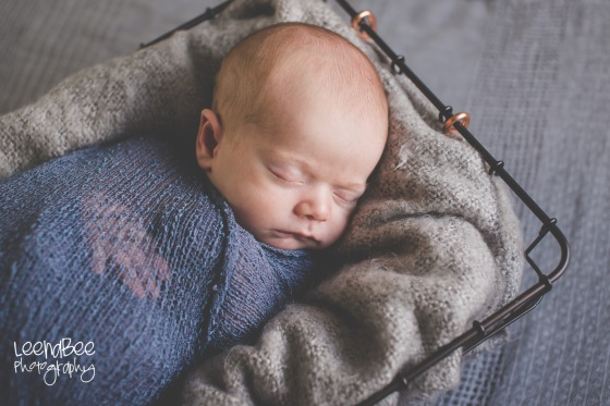 Dublin Newborn Photography-10